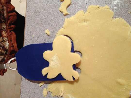 This is what your cookie will look like if you are making a lady draenei.
